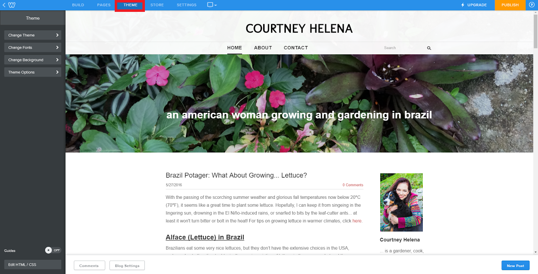 Weebly tutorial theme